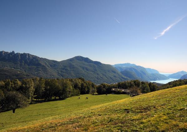 Monti di Condra